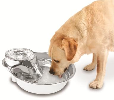 Image Result For High Low Drinking Fountain