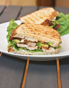 Red, White, and Blue Cheese Panini