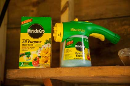 Miracle gro all purpose plant food 5 pounds 1001232 - Miracle gro all purpose garden soil ...
