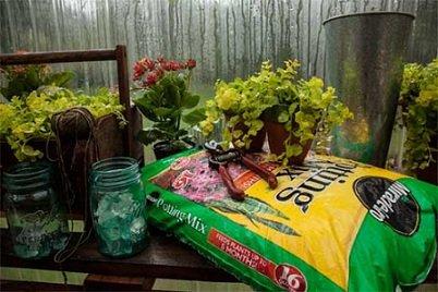 Miracle gro potting mix 16 quart for Potting soil vs garden soil