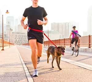 Stunt Stunt Cachorro Runner