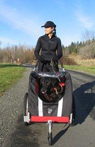 Novel trailer converts to a stroller