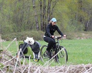 Novel bike trailer in green enjoying the outdoors