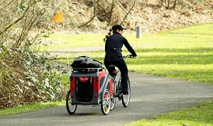 Novel bike trailer in red with roof rack and gear