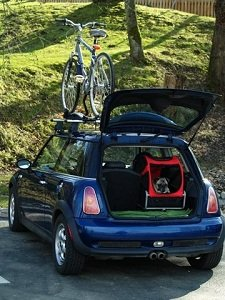 Use the Mini as a crate in the car
