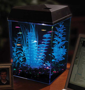 Fish Tank : Amazon.com: API Aquaview Corner Aquarium Kit with LED ...