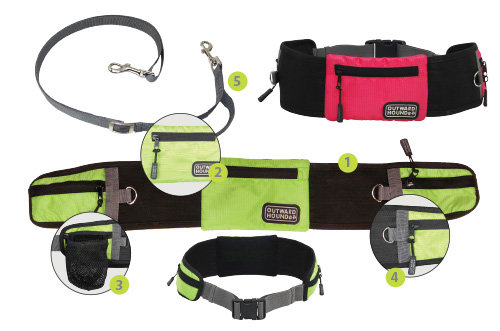 Hands Free Leash For Multiple Dogs