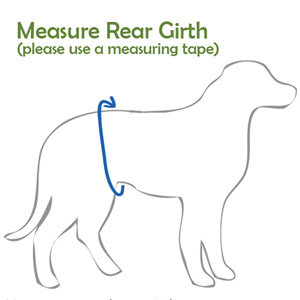 PlayaPup Measuring Instructions