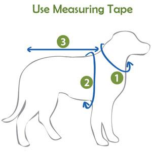 PlayaPup Measuring Instruction
