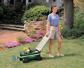 Amazon Com Cart Lawn Buddy Poly Part 2466010 Yard