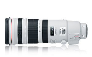 EF 200-400mm f/4L IS USM