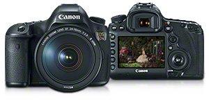 Amazon.com : Canon EOS 5DS Digital SLR (Body Only