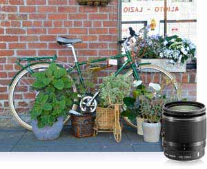 Compact 1 NIKKOR 10-100mm lens shot of bike against brick wall surrounded by plants