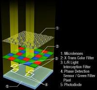 Large 2/3-inch X-Trans CMOS II Sensor