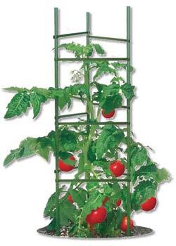 Ultomato Tomato Plant Cage