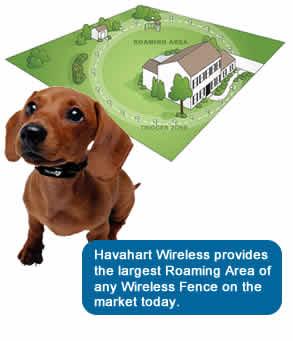 Havahart Wireless 5134gs2 Radial Shape 2 Wireless Fence