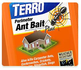 Amazon.com : TERRO 2 lb. Perimeter Ant Bait Plus T2600 : Ant Posion