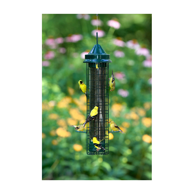 Amazon.com : Brome 1016 Squirrel Buster Finch Feeder : Wild Bird Tube