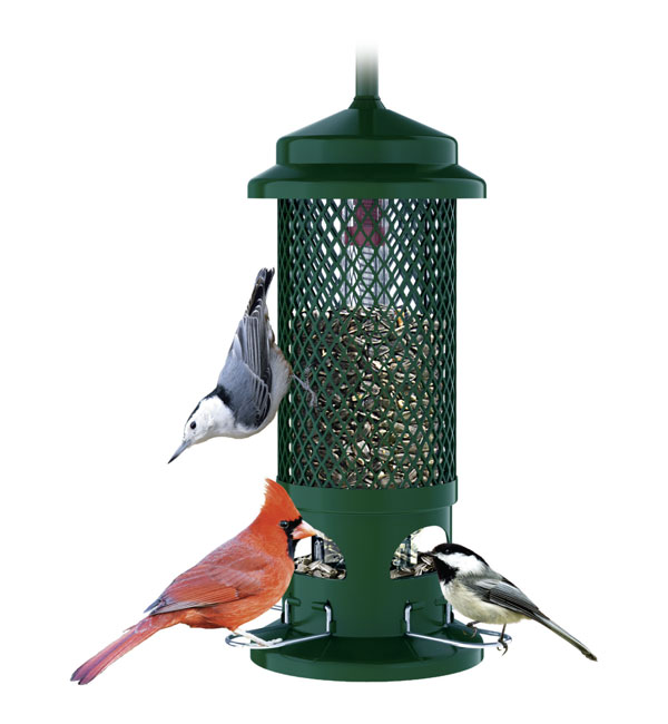 squirrel buster squirrel proof birdfeeder