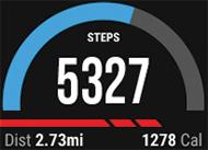Garmin Vivoactive pedometer screenshot