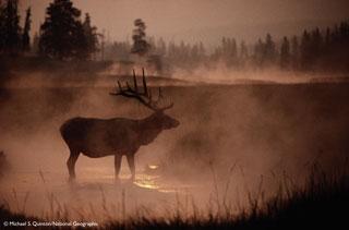 Wyoming, 1988
