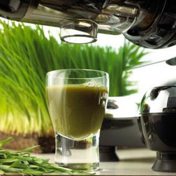 Omega J8005 Wheatgrass and Leafy Greens attachment