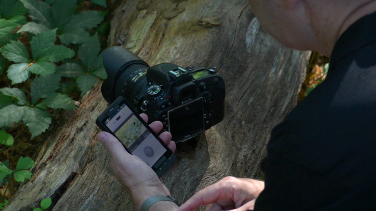 Hands On with the D600 by Nikon