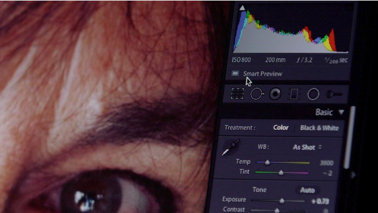 Lightroom 5: Smart Preview by Adobe