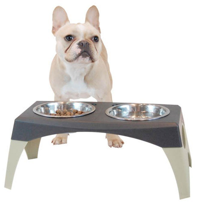 Amazon.com: Bergan Elevated Feeder - Large Storm Cloud: Pet Supplies