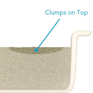 Boxiecat-clumps-on-top