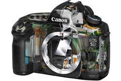 Canon EOS 5D highlights