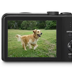 LCD Screen of the Panasonic LUMIX DMC-ZS25