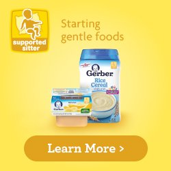 gerber baby food supported sitter stage