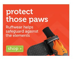 Protect Those Paws