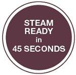 SINGER Steam Works Pro
