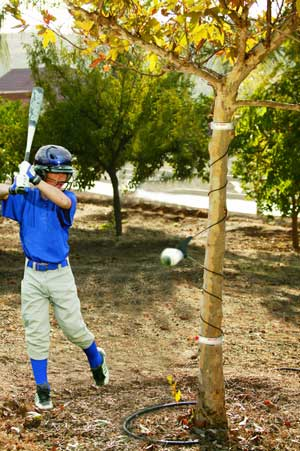 Sklz Hit A Way Baseball Swing Trainer Sklz Quick Flat Rung
