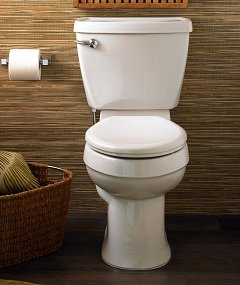 The Champion toilet seat easily matches various bathrooms.