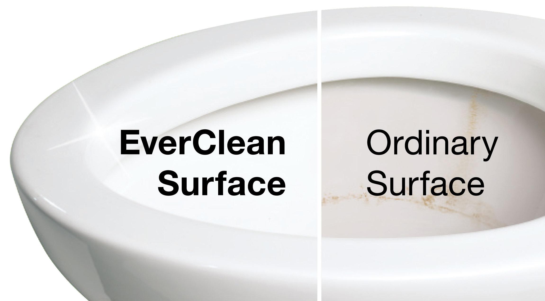 American Standard Toilet Seat Hinges Car Interior Design