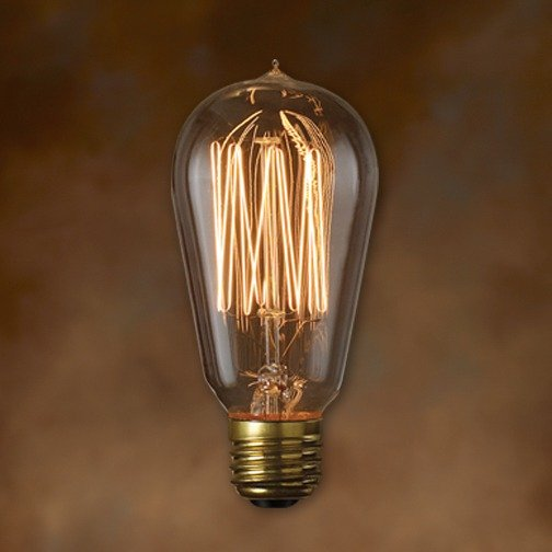 Bulbrite 134019 40w Nostalgic Edison Squirrel Cage Style Bulb Incandescent Bulbs
