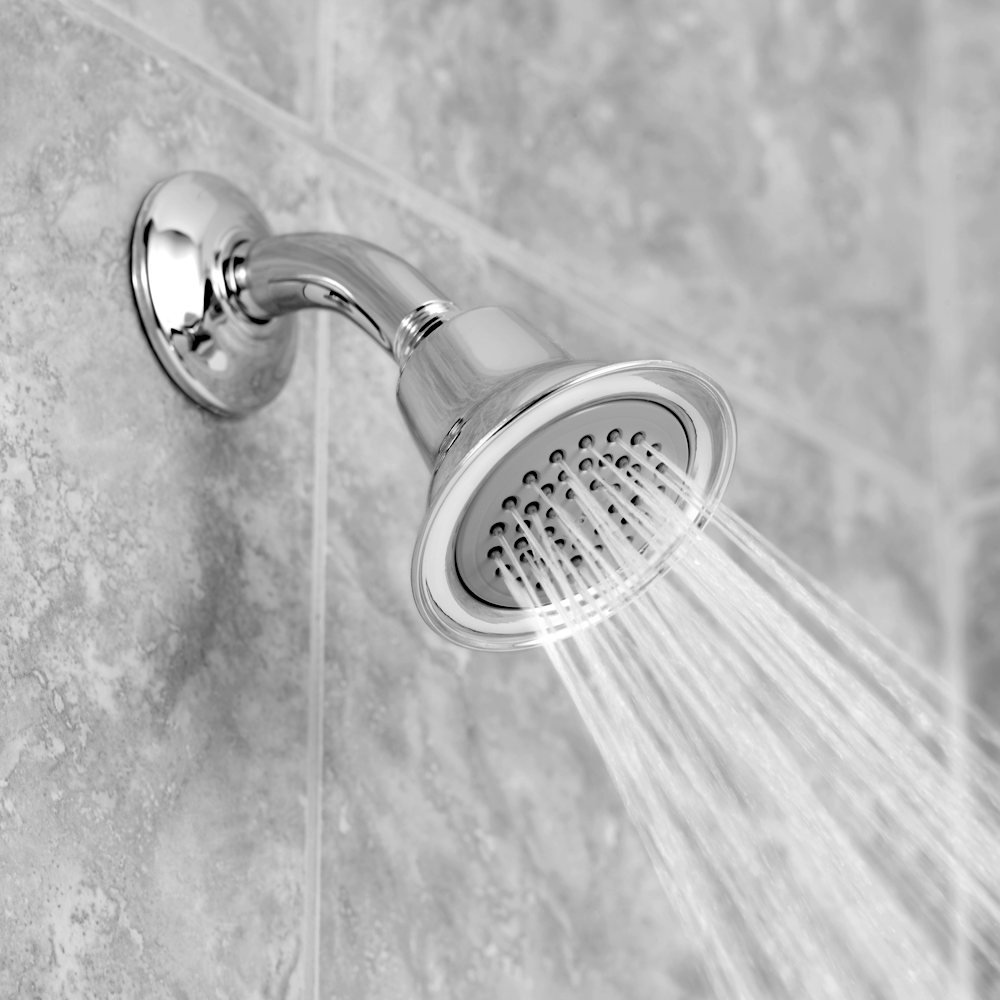 Moen 6303 Easy Clean Xlt Single Function Showerhead