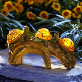 Moonrays turtles on a log