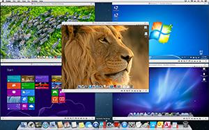Screenshot Lion, Mountain Lion, Snow Leopard Server, Win 8 RTM Enterprise, and Win 7