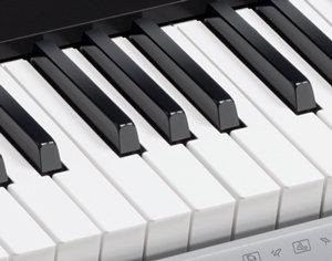 CTK-4200 Piano-Shaped Keys