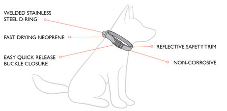 ezydog neo collar features