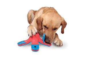 dog-games-kibble-drop