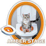 amber stage