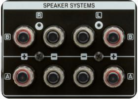 High-quality speaker terminals