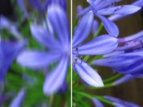 Detaillierte Bilder und Movies selbst bei maximaler Zoomeinstellung und wenig Licht