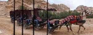 Reihenaufnahmen mit bis zu 5 Bildern pro Sekunde für bis zu 22 Aufnahmen in Serie helfen, den ganz speziellen Moment zu erfassen.