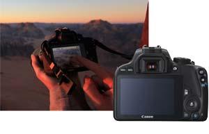 Die optimalen Kameraeinstellungen – ganz automatisch